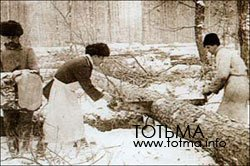 Раскряжевка древесины двуручной пилой